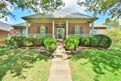 Lexington Single Family Home For Sale: 4861 Firebrook Boulevard