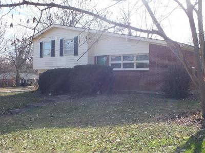 Single Family Home For Sale: 1034 Castleton Way