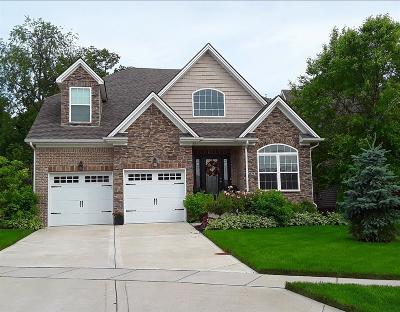 Lexington Single Family Home For Sale: 3756 Stolen Horse