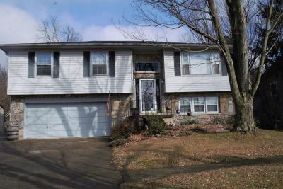 Single Family Home For Sale: 1799 Hopemont