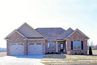 Nicholasville Single Family Home For Sale: 229 Burley Ridge Drive