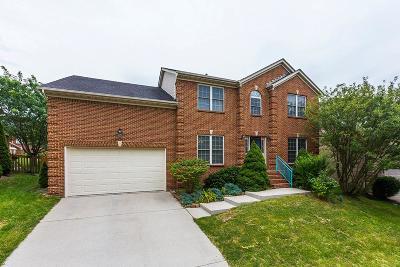 Lexington Single Family Home For Sale: 940 Marbella Lane