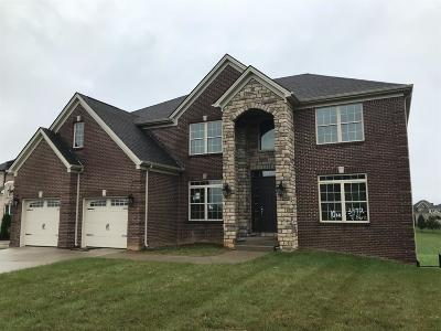 Lexington Single Family Home For Sale: 3972 Tatton Park