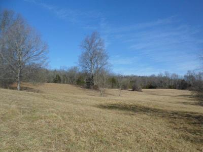 Farm For Sale: 1 Brushy Run Road