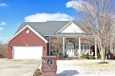 Georgetown Single Family Home For Sale: 231 Lakeside Drive