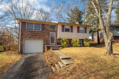 Single Family Home For Sale: 3481 Ispwich Court