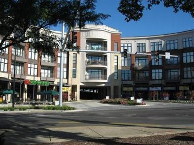 Lexington Condo/Townhouse For Sale: 650 S Mill Street #119