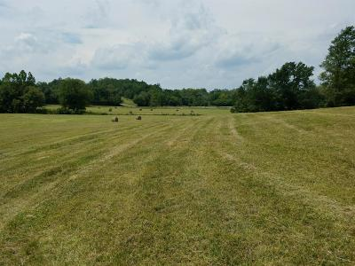 Anderson County, Fayette County, Franklin County, Henry County, Scott County, Shelby County, Woodford County Farm For Sale: 4321 Cincinnati Road