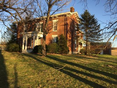 Cynthiana Single Family Home For Sale: 482 Two Lick Road