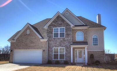 Georgetown Single Family Home For Sale: 107 Buffalo Run Court