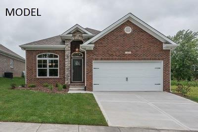 Georgetown Single Family Home For Sale: 248 Ikebana Drive