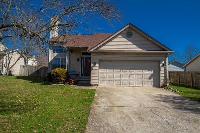 Nicholasville Single Family Home For Sale: 217 Southbrook Drive