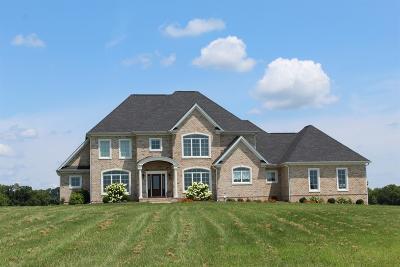Single Family Home For Sale: 1250 Grassy Springs