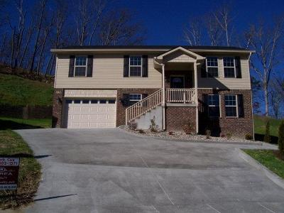 Berea Single Family Home For Sale: 924 Greenwood Dr