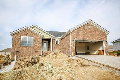 Berea Single Family Home For Sale: 656 N Fork Drive