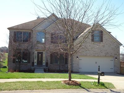 Lexington Single Family Home For Sale: 204 Somersly Place