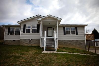 Williamsburg Single Family Home For Sale: 93 Macbennett Drive