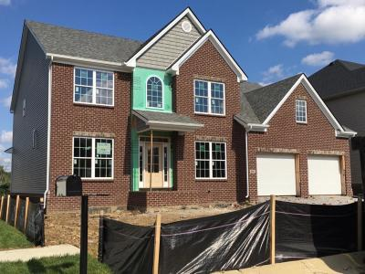 Lexington Single Family Home For Sale: 3547 Handsboro Park