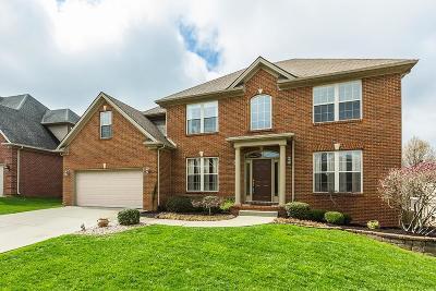 Lexington Single Family Home For Sale: 2244 Barnwell Lane