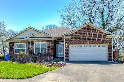 Lexington Single Family Home For Sale: 1504 Pelican Circle