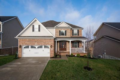Georgetown Single Family Home For Sale: 132 Schneider Boulevard