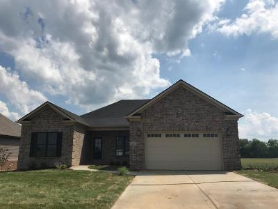 Nicholasville Single Family Home For Sale: 221 Burley Ridge Drive