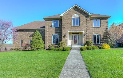 Single Family Home For Sale: 1153 Taborlake Drive