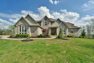 Lexington, Frankfort, Nicholasville, Berea, Richmond, Georgetown, Sadieville, Stamping Ground Single Family Home For Sale: 6496 Spears Point Lane