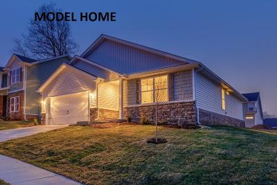Frankfort Single Family Home For Sale: 124 Old Station Road