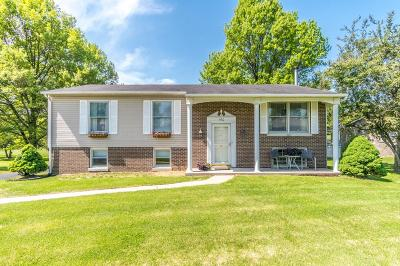 Berea Single Family Home For Sale: 160 Redbud Drive
