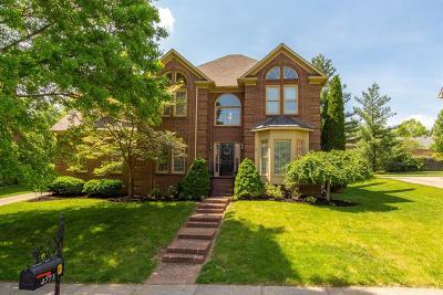 Lexington Single Family Home For Sale: 4773 Firebrook Boulevard