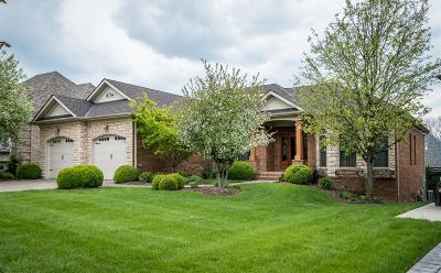 Lexington Single Family Home For Sale: 2529 Carducci Lane