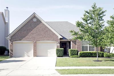 Lexington Single Family Home For Sale: 553 Bulrush Trace