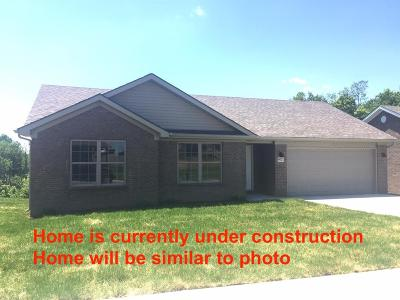 Richmond Single Family Home For Sale: 9009 Beginnings Way