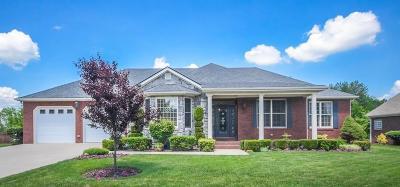Danville Single Family Home For Sale: 126 Betsy Ross Lane