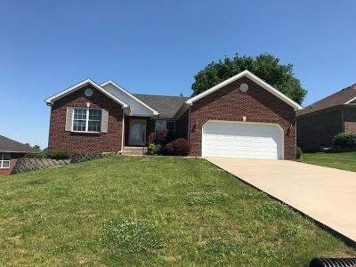Frankfort Single Family Home For Sale: 139 Locust Ridge Road