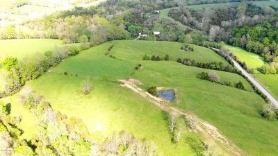Anderson County, Fayette County, Franklin County, Henry County, Scott County, Shelby County, Woodford County Farm For Sale: 1187 Back Creek Rd