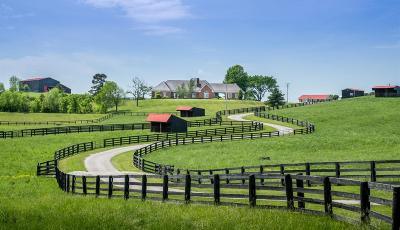 Anderson County, Fayette County, Franklin County, Henry County, Scott County, Shelby County, Woodford County Farm For Sale: 1145 Herndon Road