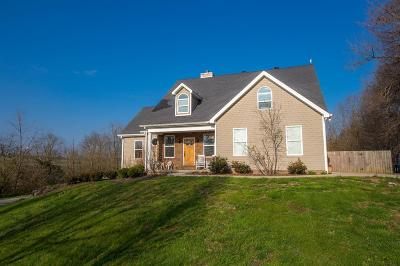 Danville Single Family Home For Sale: 85 S Buster Pike