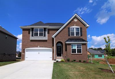Georgetown Single Family Home For Sale: 177 Swilcan Bridge Way