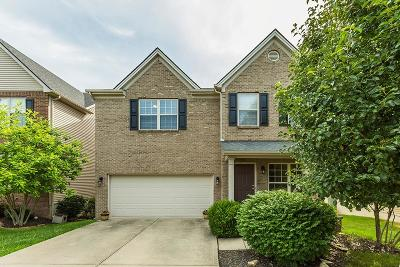 Lexington Single Family Home For Sale: 616 Stansberry Cove