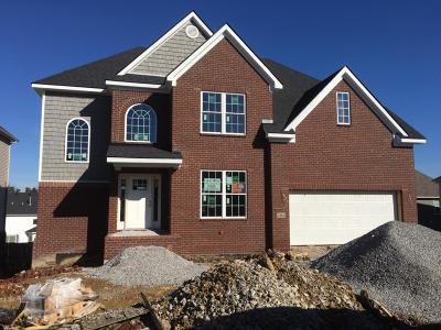 Single Family Home For Sale: 3555 Handsboro Park