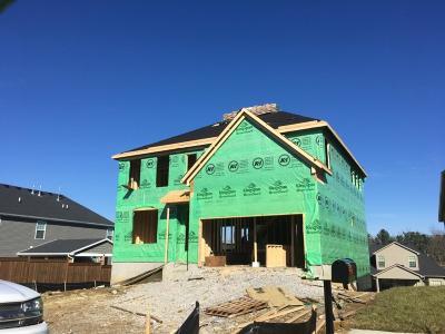 Single Family Home For Sale: 3535 Handsboro Park
