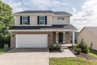 Nicholasville Single Family Home For Sale: 1121 Orchard Drive