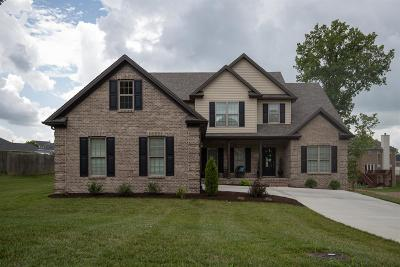 Nicholasville Single Family Home For Sale: 113 Minnow Cove Court