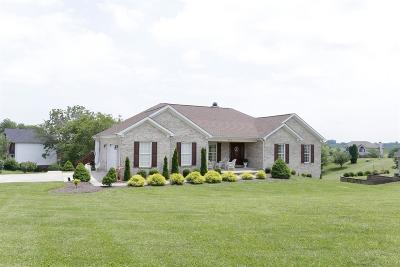 Georgetown Single Family Home For Sale: 210 Victoria Way