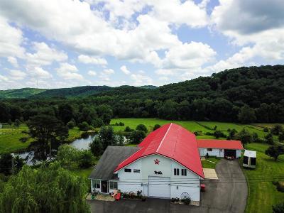 Berea Single Family Home For Sale: 725 S Dogwood Drive