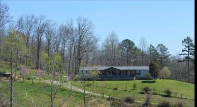 Barbourville Single Family Home For Sale: 748 Elam Branch Road