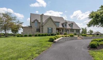 Danville Single Family Home For Sale: 1684 Quirks Run