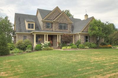 Nicholasville Single Family Home For Sale: 313 Golf Club Drive